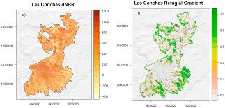Fires In New Mexico Map by Land Free Full Text Characterizing Spatial Neighborhoods Of