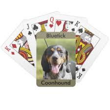bluetick coonhound nz bluetick coonhound toys and games zazzle co nz