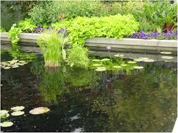 cheap backyard landscaping plans u2014 bistrodre porch and landscape ideas