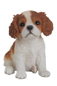 pet pals king charles puppy resin garden ornament 9 99