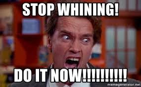 Schwarzenegger Meme - arnold schwarzenegger meme do it now mne vse pohuj