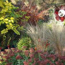 fall gardening tips u0026 ideas hgtv