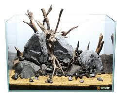 aquascaping layouts with stone and driftwood foreground aqua rebell