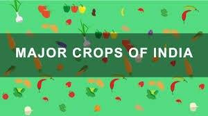Show Me A Map Of India by Major Crops Of India Youtube