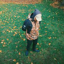 The North Face Mountain Light Jacket Wdywt Supreme X North Face Mountain Light Leaves Jacket
