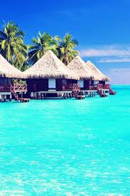 Bora Bora On Map Of The World by Best 25 Bora Bora Cruise Ideas On Pinterest Vacation To Bora