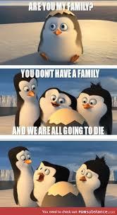 Penguin Birthday Meme - pin by destiny on funny stuff pinterest humor gifs and