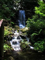 Florida waterfalls images 7 waterfalls you had no idea existed in florida jpg