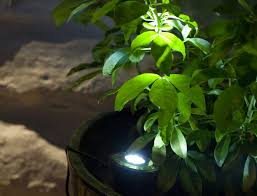 Best Solar Garden Lights The Best Solar Powered Lights Guide Uk 2016