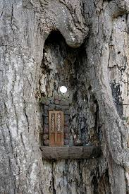 17 best images about fairy gardens and doors on pinterest tooth