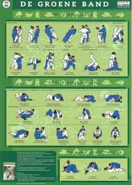 groene band judotechnieken paul thomas judo martial arts