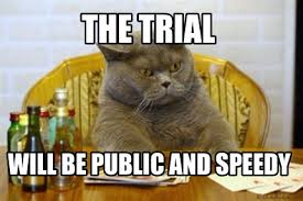 Speedy Meme - meme creator the trial will be public and speedy meme generator at