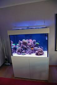 t5 lighting fixtures for aquariums cant u0027 figure this light out reef central online community