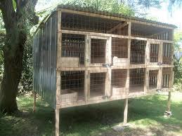 rabbit hutch plans chicken coop plans in kenya 1 rabbit hutch plans rabbit hutch