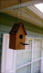 bird house plans for north carolina house and home design