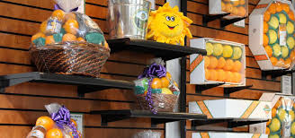 Fort Myers Home Decor Stores Places To Shop Near Fort Myers Stores Boutiques Malls Must Do