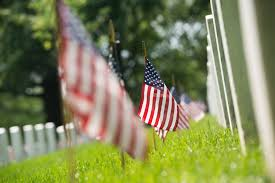 Green Day Flag Once Again U0027flags In U0027 Tradition Honors America U0027s Fallen This