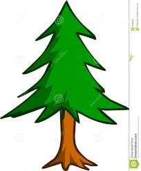 pine tree royalty free stock images image 2696849