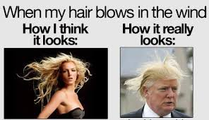 Wind Meme - hair wind meme by retu memedroid