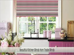 Ikea Kitchen Curtains by Best Picture Of Bamboo Blinds Ikea All Can Download All Guide