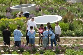 asla 2010 professional awards rooftop haven for urban agriculture download hi res image