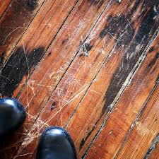 loving your home tips for fixing a wood floor scratch