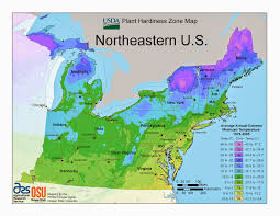 Map Of Southwest Usa States by Northeastern Us Maps Northeast Region Usa Map Northeast Region