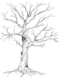 tree drawing visually appealing pinterest drawings sketches
