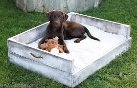 diy dog bed tutorial my frugal adventures