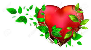 beautiful bright heart of red color with green leaves floating