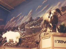 wildlife home decor ideas home designs ideas wallpaper goat wildlife home decor