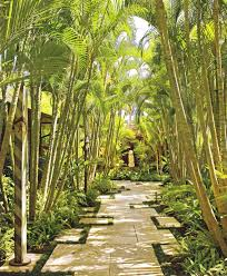 tropical pond landscape farmhouse with santa clara landscaping san