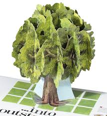 Tree Pop Up Direct Mail Promotional Pop Up Pop Ups By