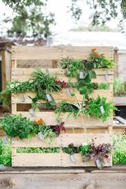 Herb Grower S Cheat Sheet 16 Best Garden Vegetables U0026 Herbs Images On Pinterest Kitchen