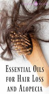 for hair essential oils for hair loss and alopecia hair loss healthy