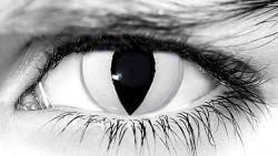 wickedeyez white cat contacts white cat prescription theatrical lens