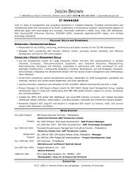 Cio Resume Sample by Java J2ee Sample Resume Resume For Your Job Application