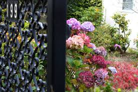 garden gate flowers free stock photo of 199 beautiful flowers gate