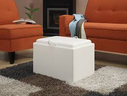 Coffee Table Ottomans With Storage by Amazon Com Convenience Concepts Designs4comfort Modern Accent
