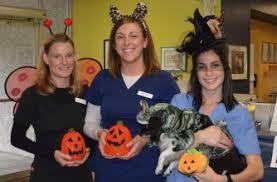 Dental Halloween Costumes Seattle Veterinarians Pet Halloween Costume Contest Seattle Wa