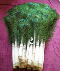 Peacock Feather Centerpieces by Custom Peacock Spray Centerpiece 175 00 Peacocks Love Them