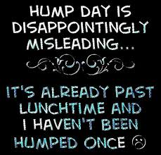 Dirty Hump Day Memes - hump day quotes quote funny quotes days of the week humor