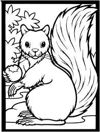 squirrel color by number coloring page click to see printable