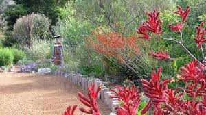 friends of peacehaven botanic park inc new members new plants australian native garden like the wooden posts garden bed