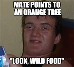 Free Food Meme - free food meme guy