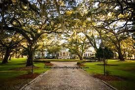wedding venues in carolina south carolina wedding venues greenfield plantation waynes