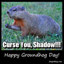 Groundhog Meme - groundhog day glitter graphics comments gifs memes and