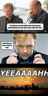David Caruso Meme - those puns at the beginning of the show get me every time