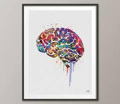 Home Decor Wall Hangings Brain Anatomy Watercolor Print Medical Art Science Art Wall