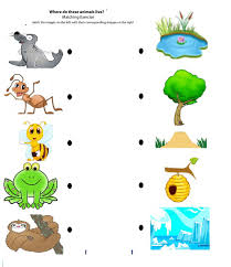 matching animals to their home worksheet crafts and worksheets